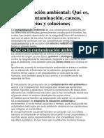 Contaminación Ambiental Ps