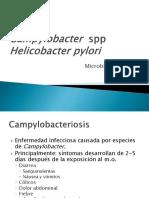 c-14-campylobacter-y-helicobacter.ppt