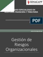 riesgo organizacional.pptx