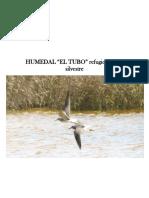 HUMEDAL DEL TUBO - MONOGRAFIA (2).docx