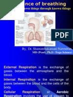 Importance of Breathingpranayama