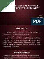 Experimente Pe Animale Aspecte Pozitive Și Negative