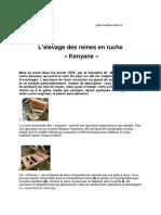 Elevage reine tbh.pdf
