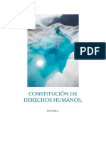 Constitución de Derechos Humanos Dinamica