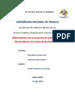 Duranta-mustisii-plan-de-inevstigación.docx