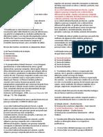 3 ano - Ficha A Evolução Biológica.docx