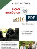 3 Ano - Ficha a Evolução Biológica