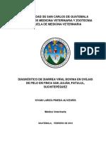 Tesis Med Vivian Pineda A
