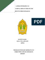 LP CKR IGD.docx