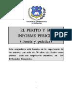 El Perito y Su Informe Pericial (Teoría y Práctica) -FB