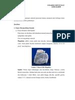 Mineral Metamorf