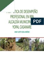 Presentación Practica de Desempeño Profesional en La Alcaldía Municipal de Yopal Casanare