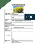 03 Ficha Tecnica_planta Tintorea Nnnn 1 Copia