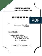 2nd Assignment of Compensation Management-- Amjad Baig