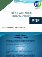 Dokumen.tips Guia de Izaje Del Usuario Crosby API Rp 2d