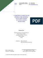 Angela Wensley Report Nueva Aldea 2010.pdf