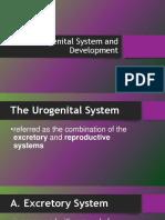 Urogenital System and Development