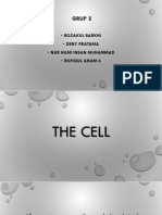 Presentation English - The Cell (Biology)