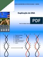 Genetica Molecular Duplicacao DNA