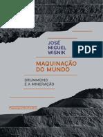 Aula 14 - Maquinacao Do Mundo - Jose Miguel Wisnik