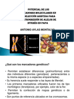EXPOSICION ANTONIO.pptx