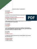 SISTEMA NERVIOSO CUARTO BASICO.docx
