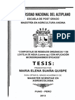tesis-ardillita.pdf