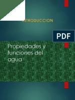 PROYECTO  AGUA MAYORAG ESPINO.pptx