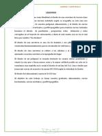 IMPRIMIR CAMINOS INFORME.docx