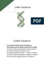 Acidos_Nucleicos[1]