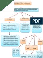 Mapa Conceptual Buenas Practicas Agricolas