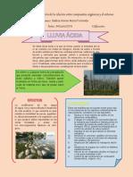 Infografia Lluvia Acida