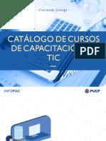 CursoExtProfesional_Catalogovirtual1.pdf