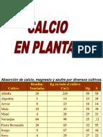 Pos CA en Plantas