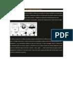 AA2 Evidencia Valores Organizacionales (1)
