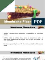 Membrana Plasmática - Novo