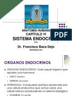 Capítulo Vi Sistema Endocrino