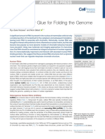 6) RNA nuclear Glue for Folding the Genome.pdf