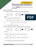 HT02SOL-Determinante y SEL (1).docx