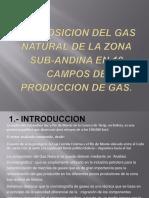 Composicion Del Gas Natural de La Zona Sub-Andina