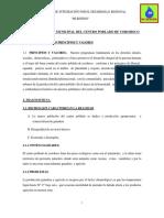 plan_de_gobierno2010.docx
