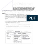 MICROCEFALIA.docx