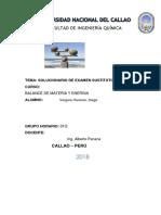 VERGARA HONORES DIEGO.docx