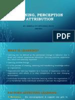 Learning Perception Attribution