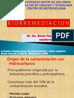 PRESENTACION BIORREMEDIACION2003