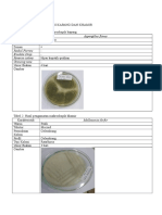 Kel.13 Mikrobiologi
