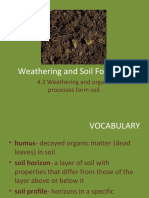 Wheathering and Soil Formation