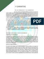 principios y garantias constitucionales y procesales