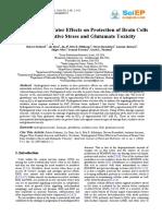 Air Hidrogen for Brain.pdf