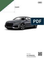 Audi corpse